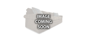 Steve Silver Logo